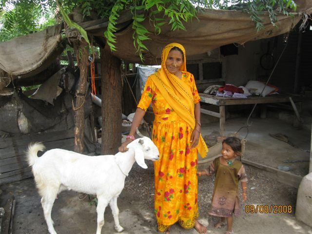 Microfinance 1