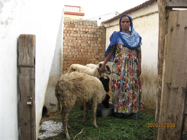 Microfinance 4